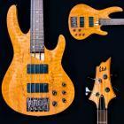 Used LTD Bass